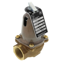 "3/4"" 790-45, 1,065,000 BTU Capacity Relief Valve Product Image"