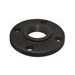 "4"" x 9"" Black Cast Iron Blind Flange, Class 125 Product Image"