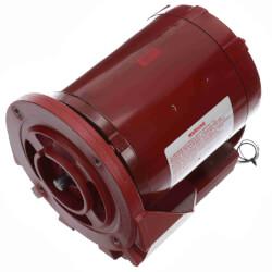 48Z Ball Bearing Hot Water Ciric. Pump Motor (115V, 1725 RPM, 1/3 HP) Product Image